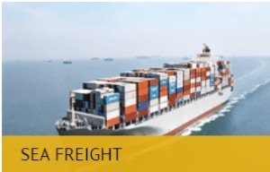 Sea Freight Shipping Logistics