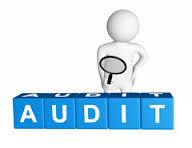 Management Auditors