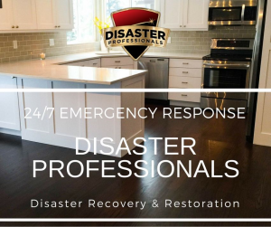 Disaster ProfessionalsPhoto 2
