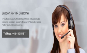HP Printer Support Phone Number
