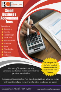 Small Business Accountant Fees