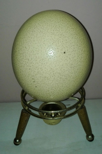 Ostrich egg shell best price