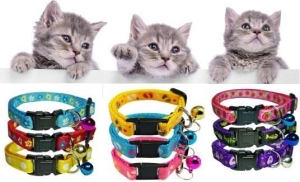 Pet Accessories Suppliers