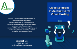 cloud hosting services for accounting softwares