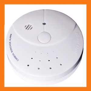 Carbon dioxide leakage detector, gas detector