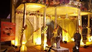 Wedding Planning Services by Professional Wedding Planners