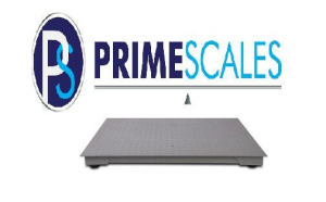 NTEP Approved Scale