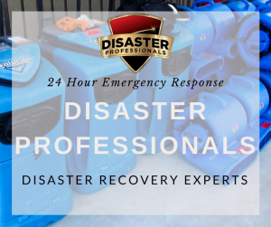 Disaster ProfessionalsPhoto 4