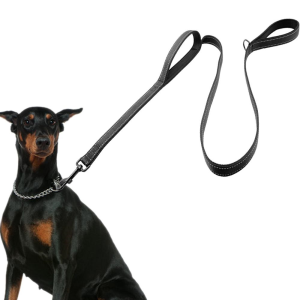Double Handed Dog Leash