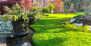 Focal Point Landscaping Inc.