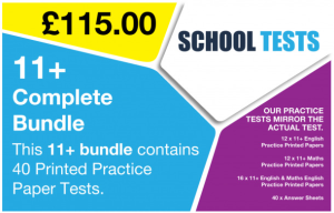 Best 11 plus practice tests from School Tests