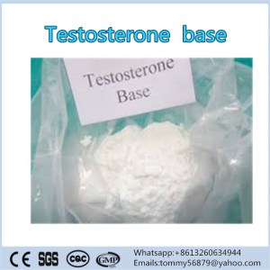 Testosterone  Base steroid powder for muscle building