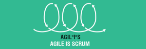 Distributed Agile Software Development Services