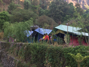 Camp Twilight Nainital image