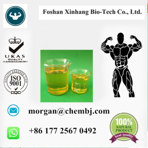 Testosterone undecanoate (Steroids)    Test undecanoate Testosterone Steroid Podwer Testosterone und