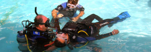 Padi Divemaster Training Program