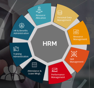 Best HRM Software in Delaware - HR Software Maine