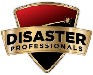 Disaster ProfessionalsPhoto 1