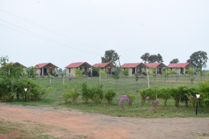 Accommodation In Tadoba National Park