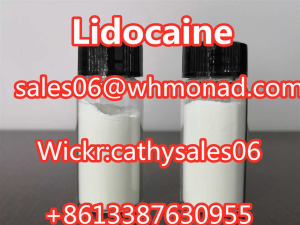 99% Purity Lidocaine Powder for Pain Killer CAS 137-58-6