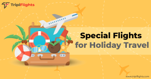Holiday Travel Deals - Tripiflights