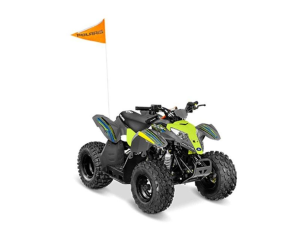 Off Road ATV For Sale Arkansas - Independence Coun