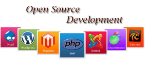 cms open source web development