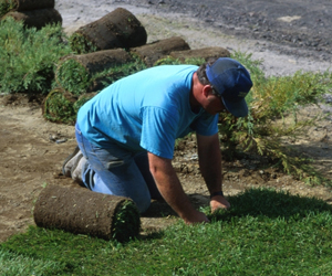 Sod Services