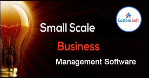 Business Management System India