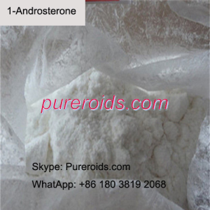 1-Androsterone Raw Powder China Supplier