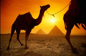 Egypt Holy Tours