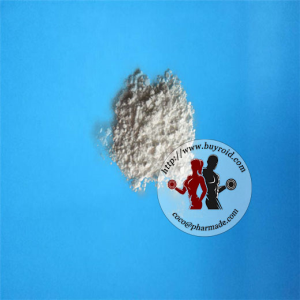 Factory Steroid Testosterone Acetate
