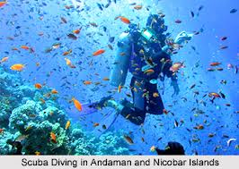 Diving in Andamans