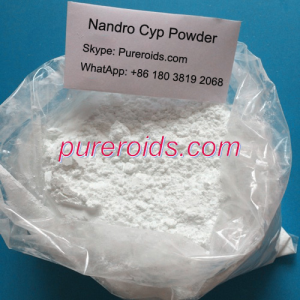 Nandrolone Cypionate Raw Powder China Supplier
