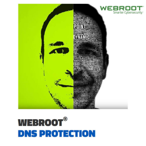 Webroot DNS Protection For Academic & Non-Profit 1-Year Subscription
