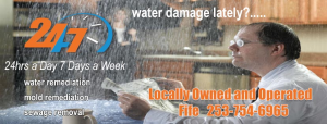 seattle water damage repair