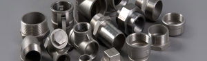 Stainless Steels Forged Fittings Manufacturer