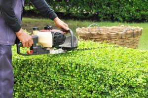 Retaining Walls & Paving Services