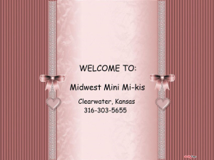 Midwest Mini Mi-kisPhoto 1