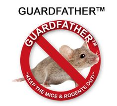Rodent Pest Control Commercial Services | PCMW