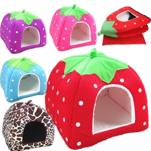 Strawberry Dog House