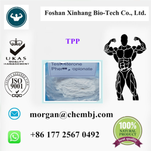 Benzocaine hydrochloride high quality ISO SGS supplier China