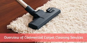 Carpet Cleaners in Irvine | Evolved Building Maintenance