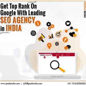 Top SEO Agency in India | ADS INDIA