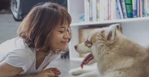 24-Hour Vets in Singapore for Your Furry Pets-Pets Avenue Veterinary Clinic