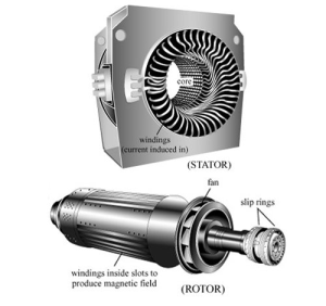motor body and rotor