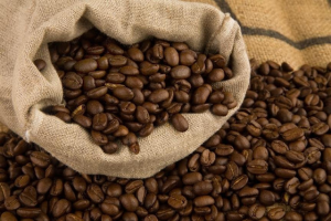 Coffee Beans (Arabica ) for Export / Supply