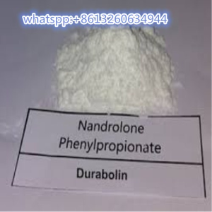 High purity Nandrolone phenylpropionate raw powder for bodybuilding  whatspp:+8613260634944