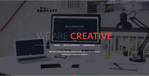 Website designing in pune