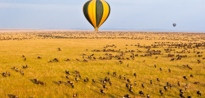 4-Day Migration Safari with Jamboree plus Hot Air Balloon Ride